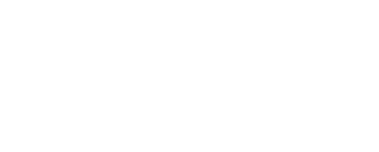 Stride_logo_white cropped